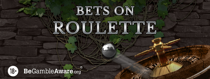 11 Roulette Bets