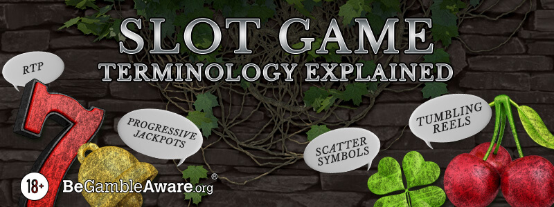 Slot Game Terminology Explained