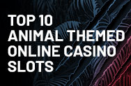 Top 10 Animal Themed Online Casino Slots