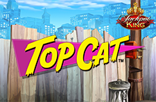 Top Cat Jackpot King Slot at Bingos