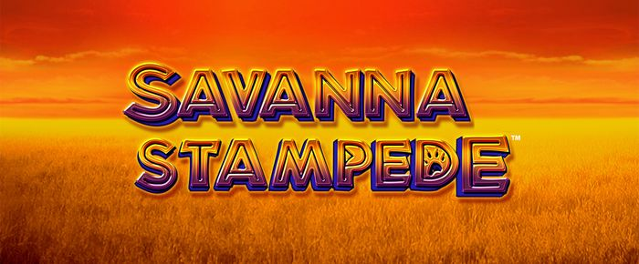 Savanna Stampede online slots UK