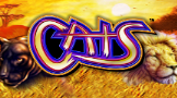 Play Cats online slot at Crown Bingo