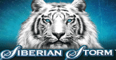 Play Siberian Storm online slot at Crown Bingo